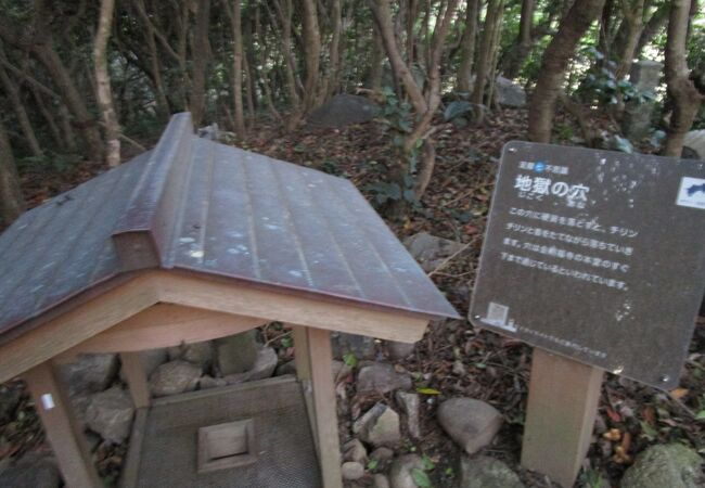 金剛福寺に関係