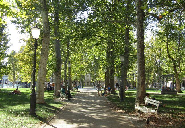 ズヴェズダ公園 (コングレスニ広場)