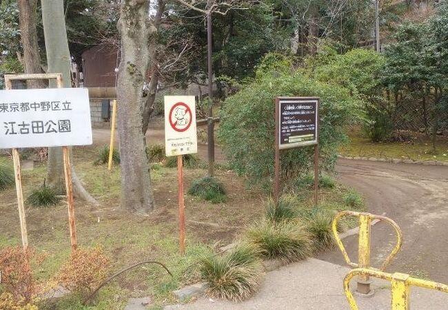 江古田公園