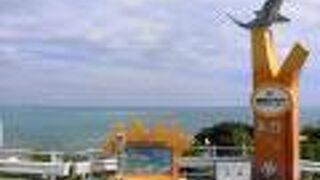 知念海洋レジャーセンター
