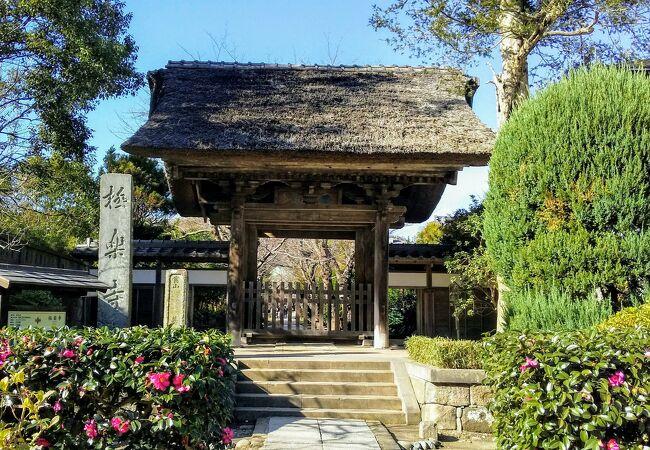 茅葺きの山門に風情がある『極楽寺』