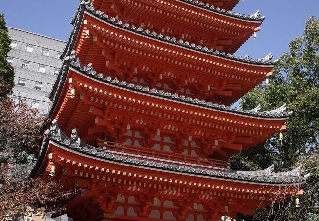 東長寺 五重塔