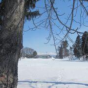 冬は一面雪に埋もれる