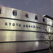 京都市内の都市型水族館