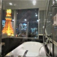 ブロアバスのビューバスで東京タワーを眺められる