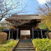 300年前に建てられた重要文化財に指定されている山門・本堂・鐘楼は見応えあります。