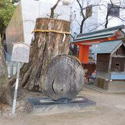 再生のシンボル「楠の神木」