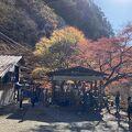 昇仙峡 金渓館