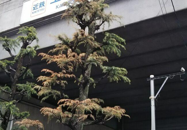 上鳥羽口駅