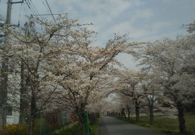 大平山県立自然公園