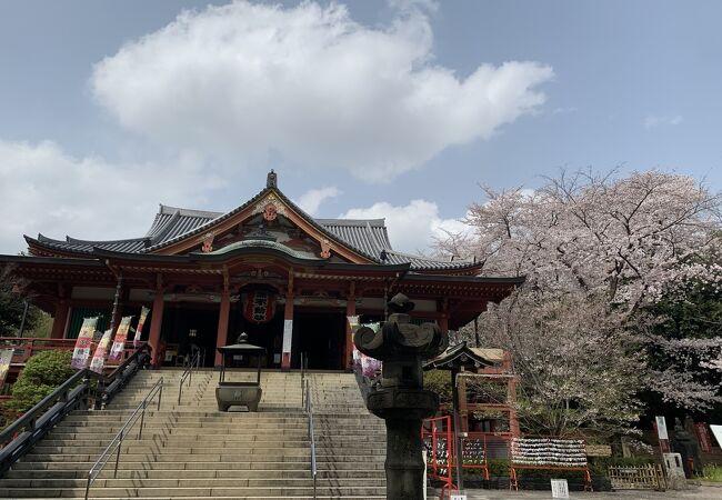 広くて立派なお寺です