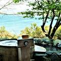 油壺温泉では網代湾が♪