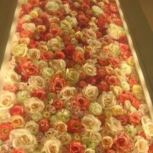 HOPOSTの周りはこんなお花で囲まれていました