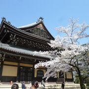 桜シーズンでも楽しめる南禅寺