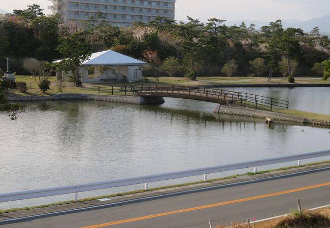 新舞子浜公園