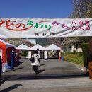 広島造幣局 花のまわりみち