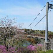 21年4月18日はつつじまつりです。まつりの9日前に行きましたがきれいに咲いていました。