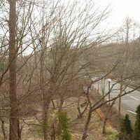 2階客室からの眺め(山中湖や富士山が庭木で見えません)