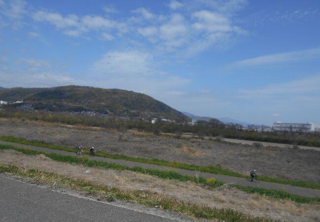 1.4㎞の桜並木の堤