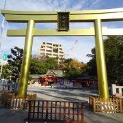 金色に輝く鳥居 (金神社)