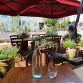 小田急線線路跡地にできたおしゃれなカフェレストラン