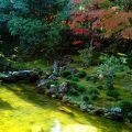 高知県三名園のひとつです。