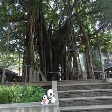 台中文学館