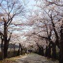 みゆき公園(山形県上山市)