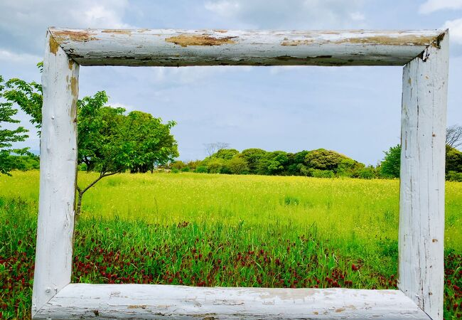 旧しまばら芝桜公園