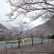 湯檜曽公園