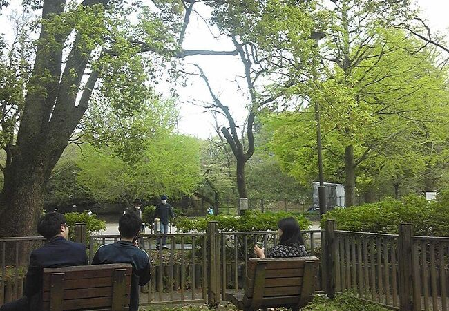 戸山公園(交通公園)