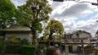 今宮神社 (右京区)