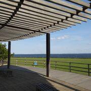穏やかな東京湾を望む気持ちのいい公園