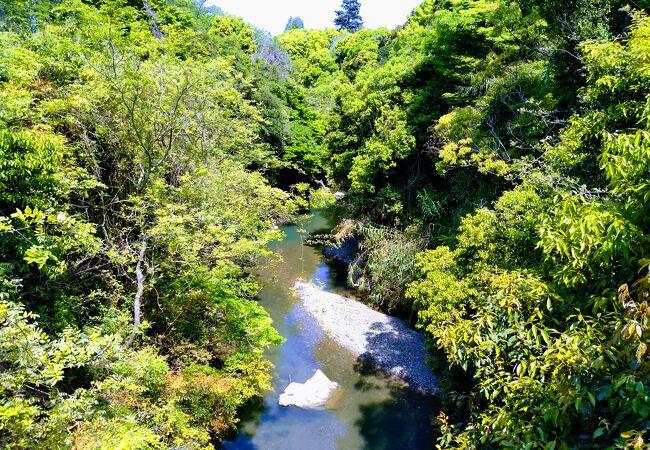 日根神社の境内を通ってのアクセスがスムーズ