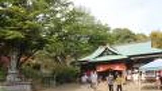 佐白山正福寺(観世音寺)
