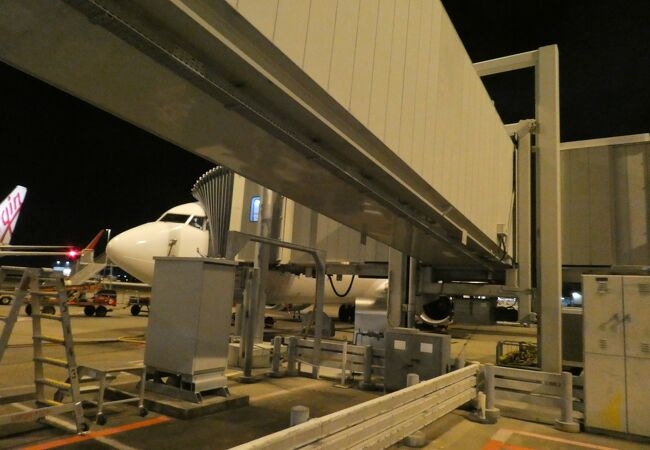 SYDNEYからの最終便で国内線ターミナル到着!