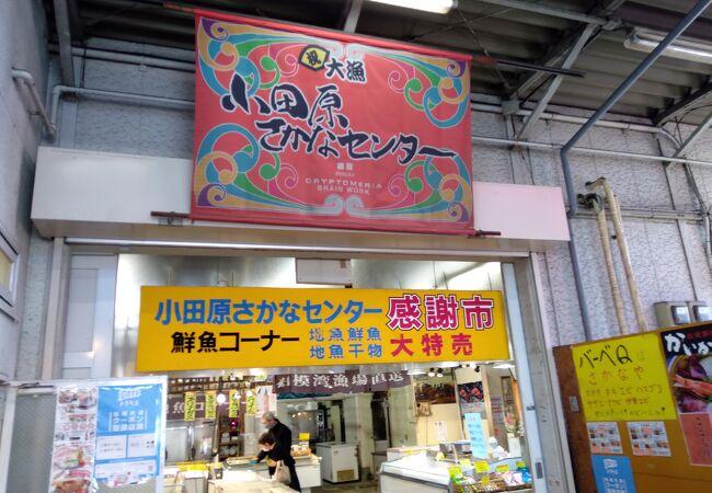 小田原さかなセンター