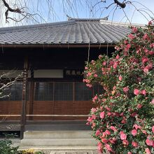 地蔵院 (椿寺)