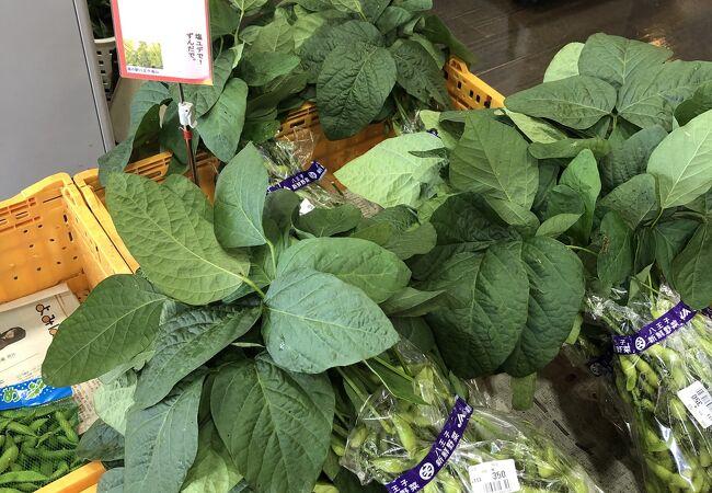八王子産野菜