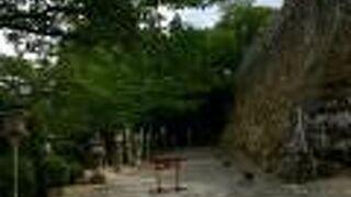 武雄神社の肥前鳥居