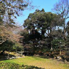 近衛池 (京都御苑内)