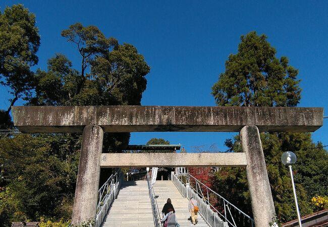 犬山城観光の折に