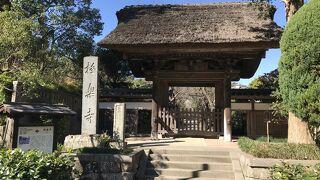 極楽寺(鎌倉):極楽寺駅の裏手に