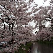 名にし負う《桜の名所》弘前公園