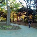 横浜スタジアムのある公園です。