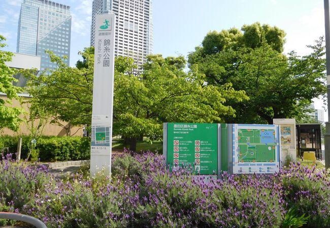 錦糸町駅近くの広々とした公園