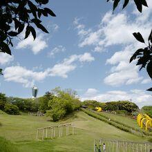 長いローラー滑り台等、子供向けの遊び場もあります。