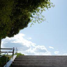 青空の下で、一日かけて目一杯休日を楽しめます。