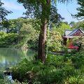 東京の最も人気の公園