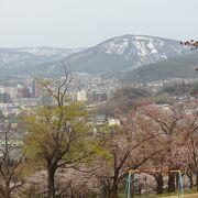 小樽の桜のスポット